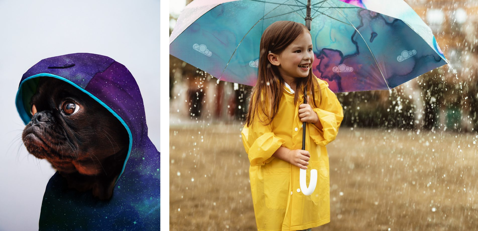 Loops adverts - A dog in a raincoat and a girl under an umbrella
