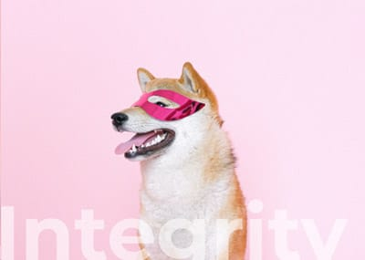 about-us-dog-integrity